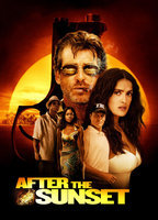 After the sunset 729febbb boxcover