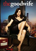 The good wife c927d51f boxcover