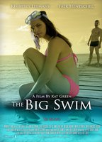 The big swim 762dfcdc boxcover